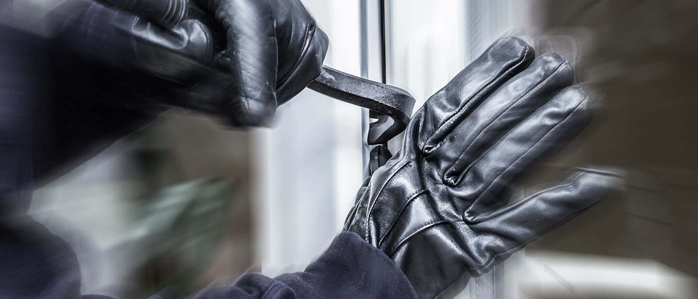 The Surprising Things That Burglars Hate