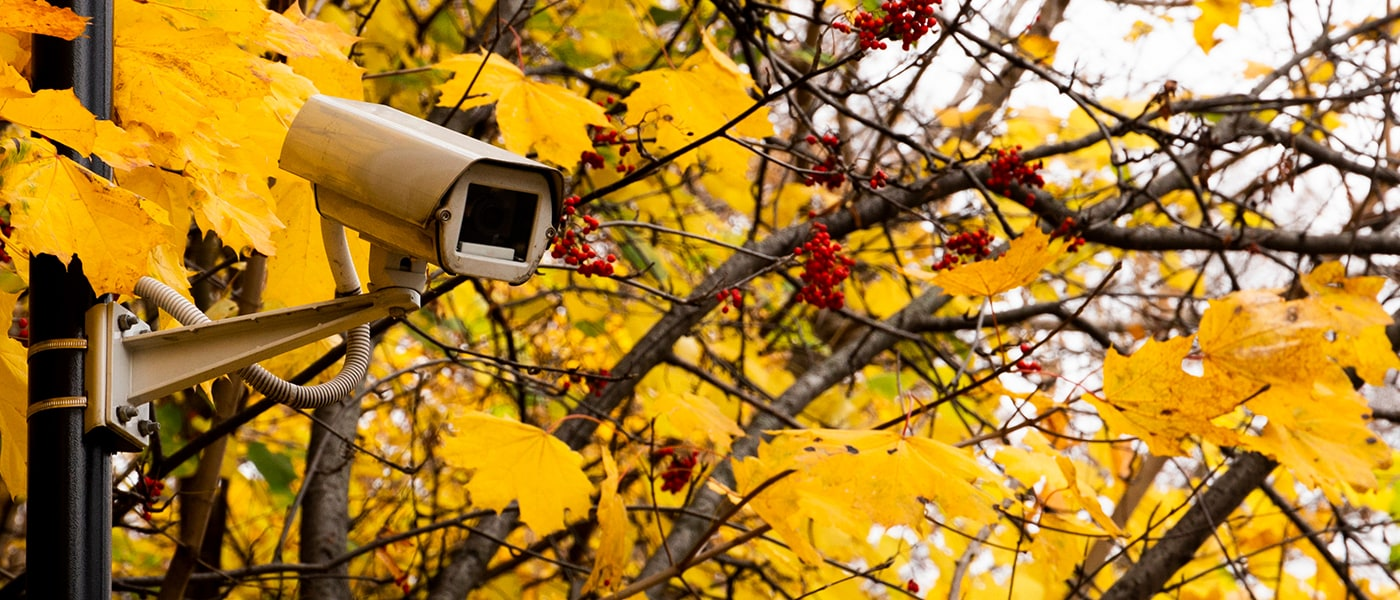 Stay Safe With These Fall Home Security Tips